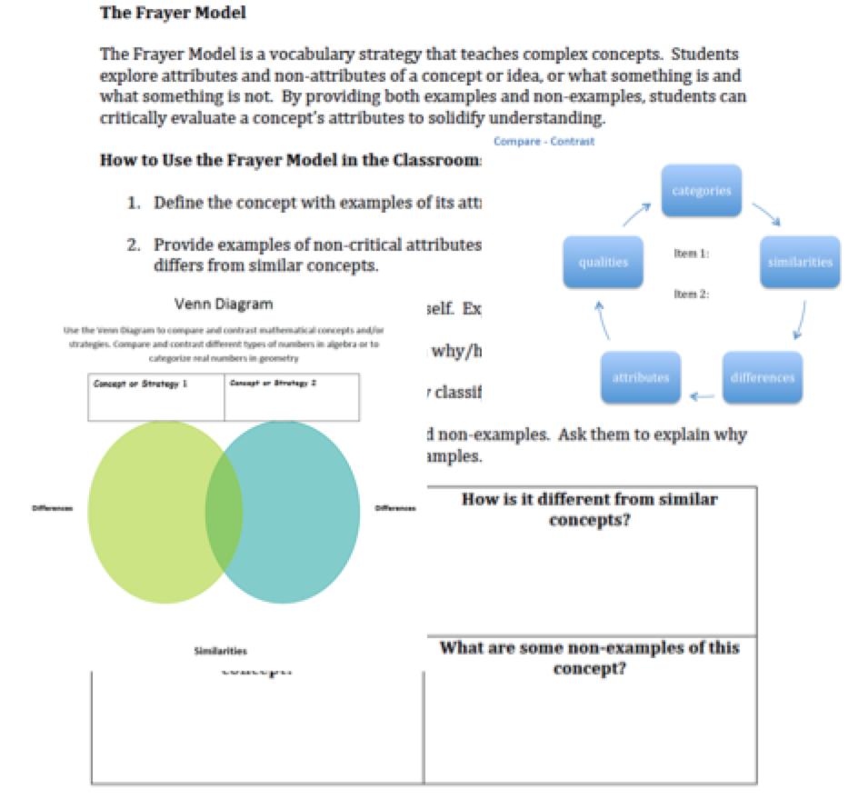 Differentiated Instruction Literacy Solutions